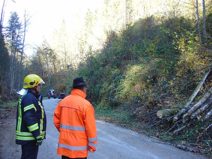 You are browsing images from the article: 30.10.2018: Technische Hilfeleistung - Sturmschaden Höllgraben