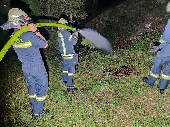 You are browsing images from the article: 25.07.2019: Gerissene Stromleitung verursacht Wiesenbrand