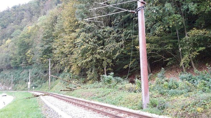 You are browsing images from the article: 09.10.2015: Straßenfreilegung nach Baumabsturz