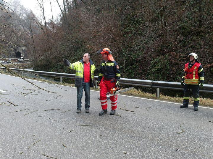 You are browsing images from the article: 18.11.2016: Technische Hilfeleistung - Baum über Mariazellerbahn und LB39