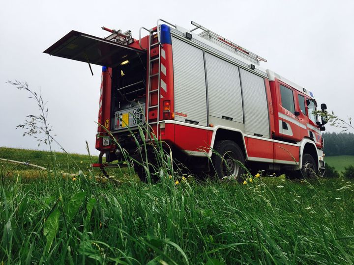 You are browsing images from the article: Trockenheit und Insekten fordern Feuerwehr