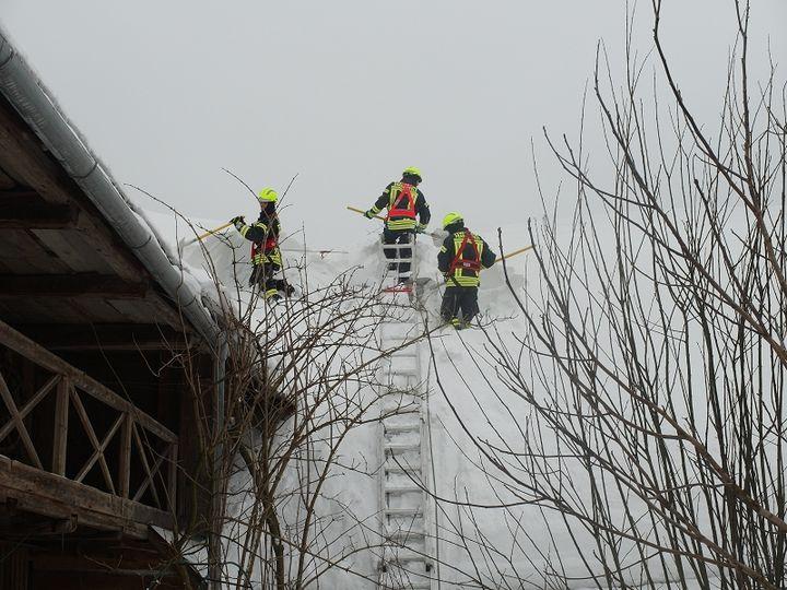 You are browsing images from the article: 12.01.2019: Technische Hilfeleistung - Schneelast entfernen